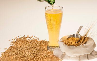 Stimulating demand for Australian malting barley in Ethiopia