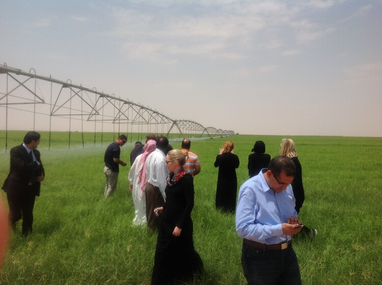 Image - Australian grain growers in a crop under pivot irrigation at NADEC dairy farm, Haradh, Saudi Arabia, 2014. Image courtesy: Sean Cowman