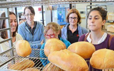 Training course: Commercial Baking: The Basics