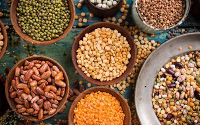Australian faba beans get a tune-up